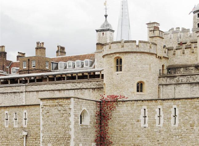 """一战百年纪念:英国伦敦塔铺满陶瓷罂粟"""""""