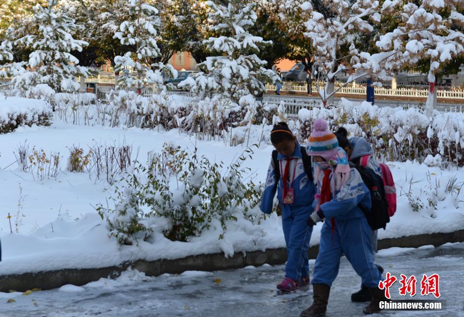 交通出行和牧民野外放牧造成困难.张建刚 摄-新疆巴里坤遭遇暴雪