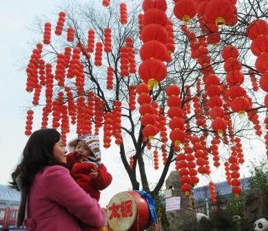 """山西太原""""灯笼树""""喜庆壮观"""""""